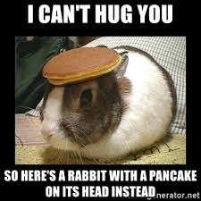 Photo Meme: 'I cant' hug you so here's a rabbit with a pancake on it head instead'