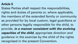 Screen shot of Article 5