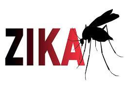Zika graphic