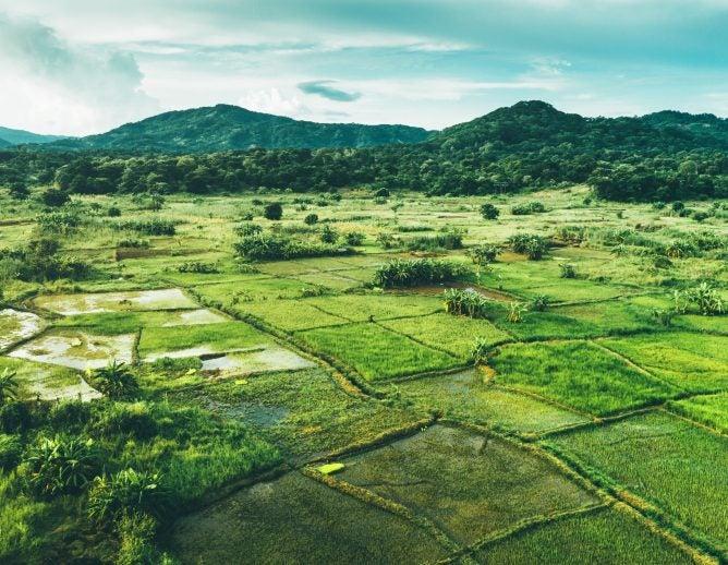 Rural landscape in Malawi, Africa