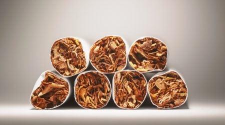 Tobacco Photo
